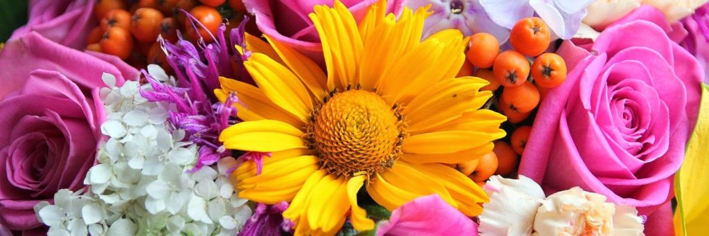 Flowers Twitter Header Pink Yellow White 1500x500 - Hipi.info